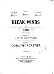 Bleak Winds