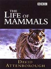 The Life Of Mammals (Theme from the BBC TV Series)
