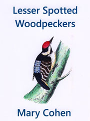 Lesser Spotted Woodpeckers